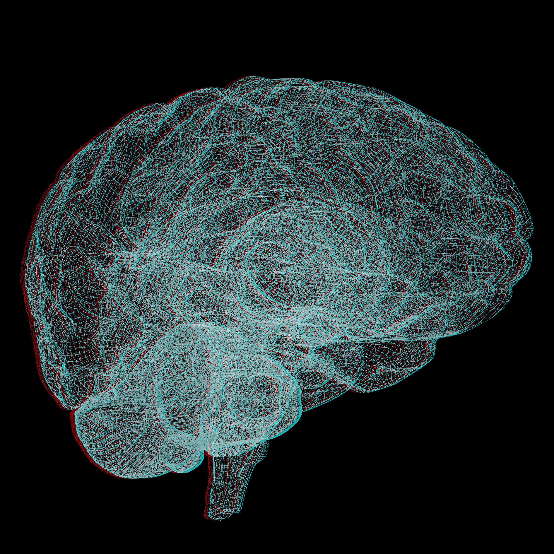 Gehirnabbild in Grün