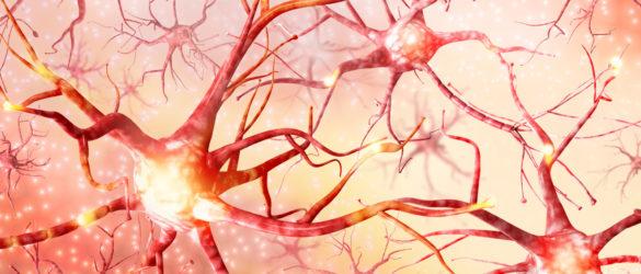 Neuroplastische Therapie
